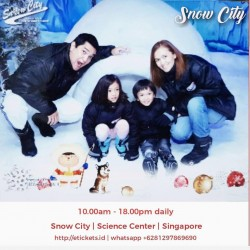 Snow City (Adult)