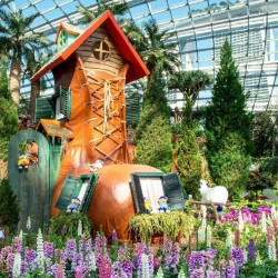 Garden by the bay (flower dome + cloud forest) (Adult)