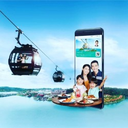 Cable Car Mount Faber Line & Sentosa Line (Adult)